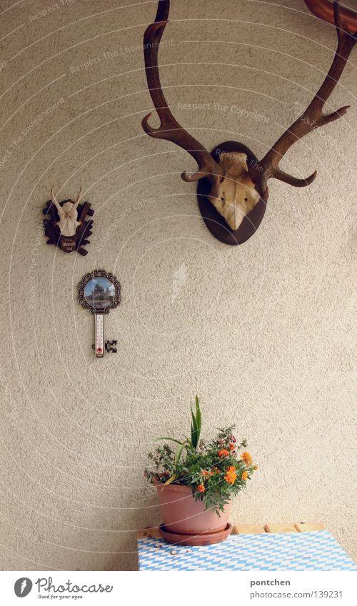 Beim Verliebten auf dem Balkon Blume Tier Tod Deutschland Freizeit & Hobby maskulin Idylle München Jagd Horn Bayern obskur Heimat Hirsche ländlich