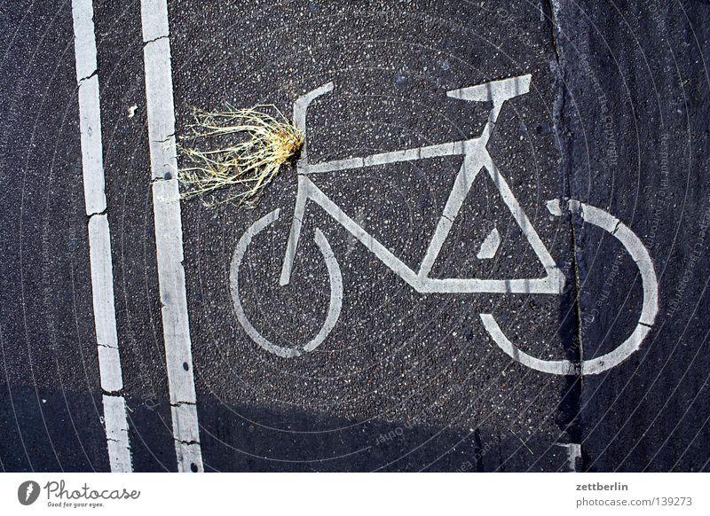 Licht Fahrrad Verkehrssicherheit Batterie Fahrbahnmarkierung Fahrradweg Seitenstreifen Straßenverkehr Verkehrswege Schilder & Markierungen Scheinwerfer dynamo