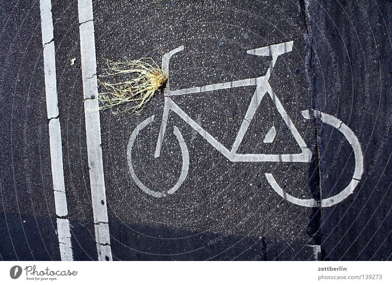 Licht Lampe Fahrrad Beleuchtung Straßenverkehr Schilder & Markierungen Verkehrswege Scheinwerfer Fahrbahn Batterie Seitenstreifen Fahrradweg Fahrbahnmarkierung