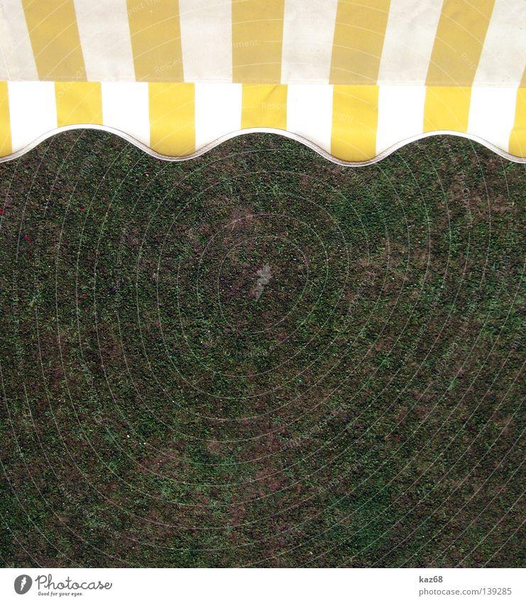 Wellen.... Markise Sommer Physik Winter Himmel Stoff Streifen gelb weiß Gras Ferien & Urlaub & Reisen Balkon Wohnung Haus Häusliches Leben Wetterschutz hell