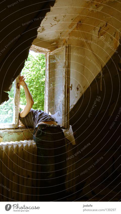 (raus)hänger Mensch Frau Natur alt grün Baum Pflanze Sommer Blatt Einsamkeit dunkel Fenster feminin Wand Wärme Beine