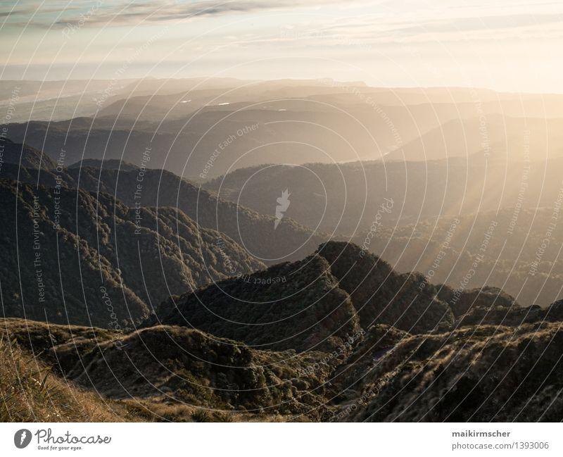 Neuseeland Gebirge im Sonnenuntergang Natur Ferien & Urlaub & Reisen Sommer Erholung Landschaft ruhig Wolken Ferne Wald Berge u. Gebirge Umwelt natürlich