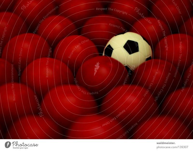Italien wird Europameister Unschärfe Tiefenschärfe Gemüse Sport Tomate Ball Schwache Tiefenschärfe 1 viele Fußball rund Kugel klein skurril außergewöhnlich