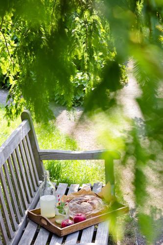 Picknick im Garten grün Sommer Baum Erholung Frühling Gras Wege & Pfade Lebensmittel Frucht Park modern Glas Ernährung genießen Schönes Wetter