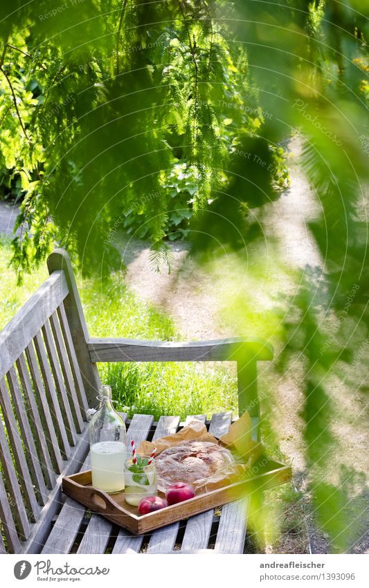Picknick im Garten Lebensmittel Frucht Brot Ernährung Frühstück Erfrischungsgetränk Limonade Flasche Glas Frühling Sommer Schönes Wetter Baum Gras Park