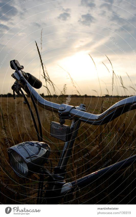 Ein Rad im Kornfeld Fahrrad Sonnenuntergang unterwegs Dämmerung Feld ruhig Erholung Romantik Wolken Ferne Einsamkeit Sommer Sommerabend Getreide Abend gold