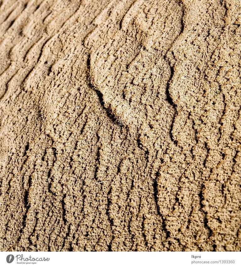 Natur Ferien & Urlaub & Reisen schön Einsamkeit Landschaft gelb braun Sand Idylle Schönes Wetter Hügel heiß Afrika Düne Urwald Tapete