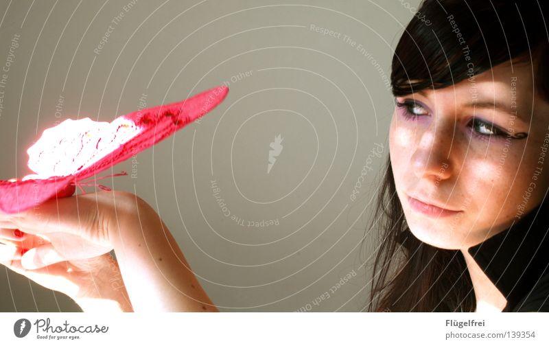 zart Sonne rot Tier Wärme Bewegung Freiheit Zusammensein rosa fliegen gold Kraft sitzen Finger festhalten Vertrauen Konzentration