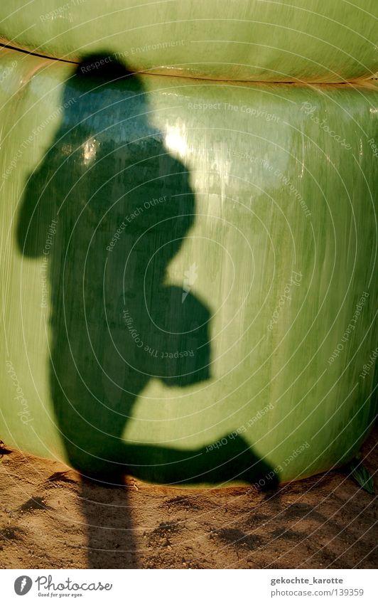 grÜnzeug Mensch grün Sommer Freiheit Bewegung glänzend warten natürlich Landwirtschaft Denkmal Wahrzeichen standhaft Salto verpackt Schattenspiel Folie