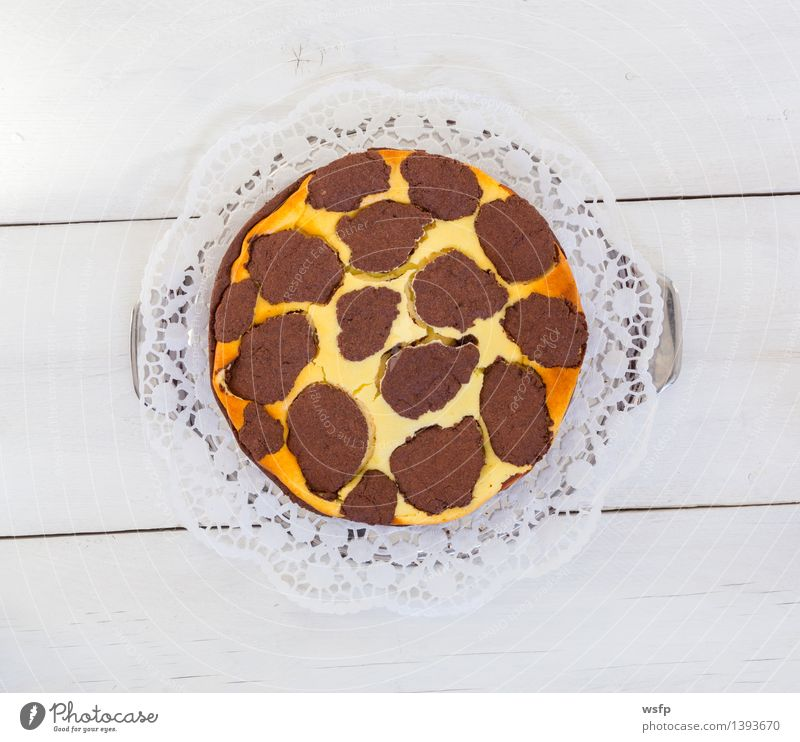Russischer Zupfkuchen auf weißem Holzhintergrund Kochen & Garen & Backen Holzbrett Kuchen Dessert Backwaren Holztisch rustikal Landhaus Schokoladenkuchen