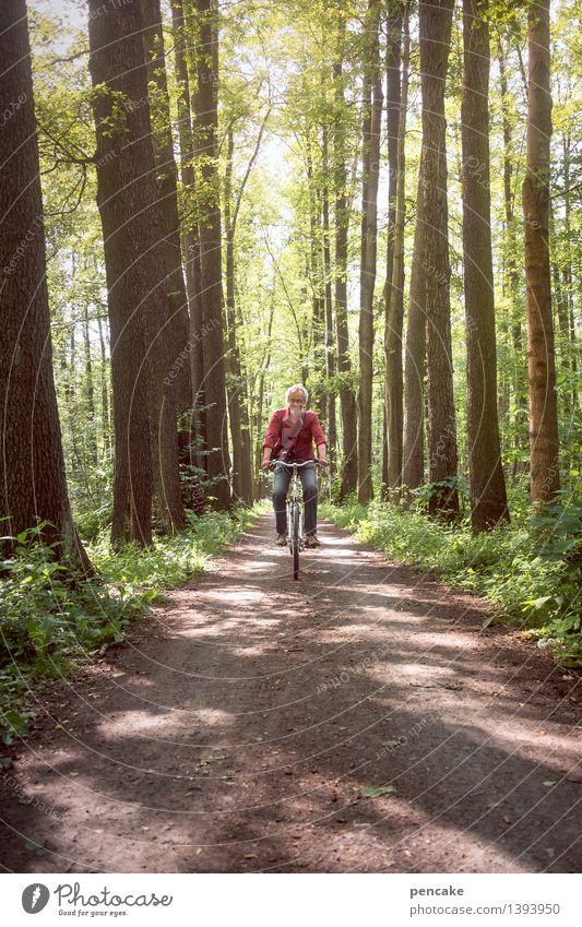 Mann fährt auf Fahrrad durch den Spreewald Mensch maskulin Erwachsene Leben 1 45-60 Jahre Frühling Wald Wege & Pfade Fahrzeug Bewegung Erholung Fitness