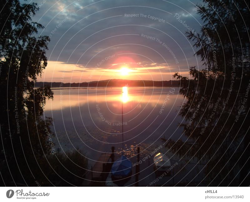 sunrise Sonnenaufgang Tanne Baum Steg Wasserfahrzeug Segelboot Segeln Reflexion & Spiegelung Wasserspiegelung Morgen Wolken sun rise sunup sun-up Strommast