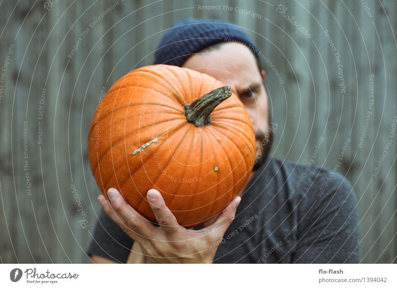 My KÜRBIS Mensch Pflanze schön Herbst Denken Mode Lebensmittel orange maskulin authentisch ästhetisch Ernährung Landwirtschaft festhalten nah Gemüse