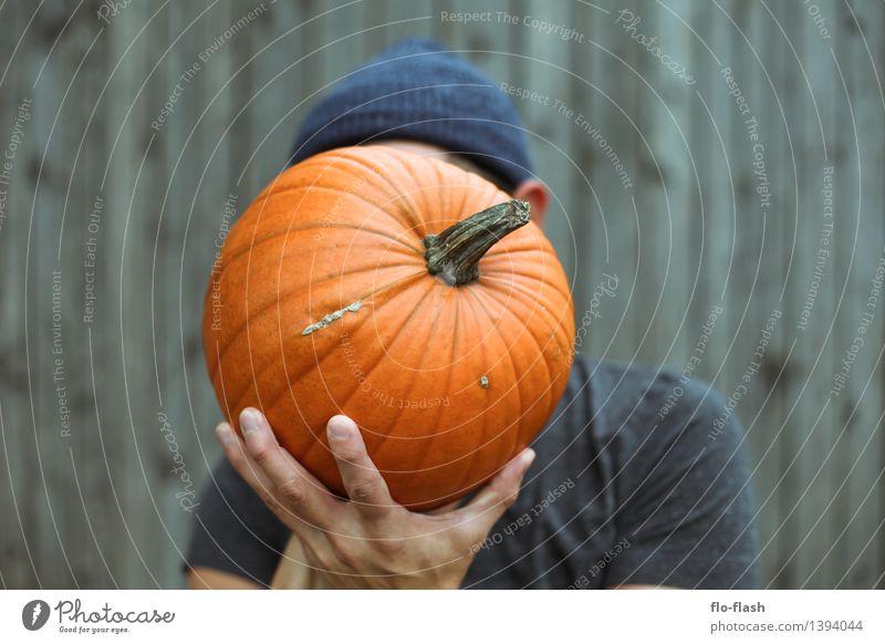 My Kürbis IV Natur Erholung ruhig Herbst Gesundheit Garten Lifestyle orange maskulin Freizeit & Hobby Ernährung Landwirtschaft festhalten Gemüse lecker