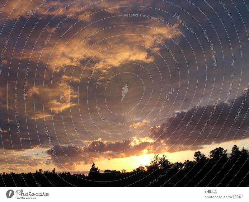Sonnenstrahlen Baum Ferien & Urlaub & Reisen Wolken Beleuchtung Brandenburg Werder Havel