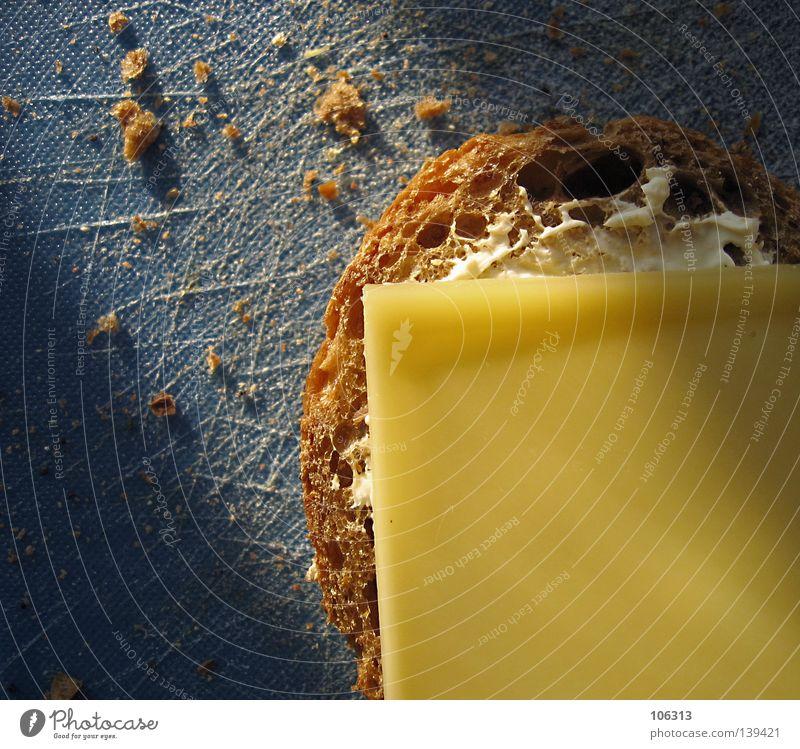 PHOTKÄS' Käse Käsebrot bleich gelb Ernährung Brot Brötchen Frühstück Vollkorn Schneidebrett blau braun Milcherzeugnisse Krümel zerbröckelt Teile u. Stücke