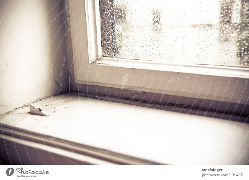 Fenster mit Regentropfen drauf ... alt weiß Fenster Regen Glas Häusliches Leben Staub Altbau Fensterbrett Fensterrahmen