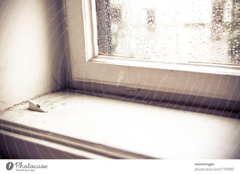 Fenster mit Regentropfen drauf ... Staub Fensterrahmen Fensterbrett weiß Licht Altbau Häusliches Leben Lomografie Glas alt