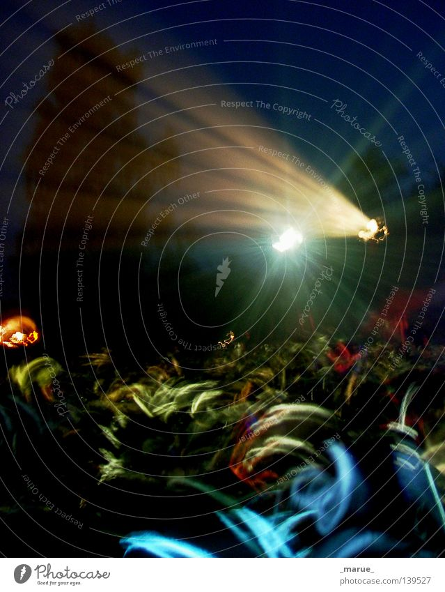 Tanz der Kosmonauten Menschenmenge Licht Nacht Lichttechnik durcheinander Zusammensein Linie Konzert Musik Musikfestival Fusion Scheinwerfer Stern (Symbol)