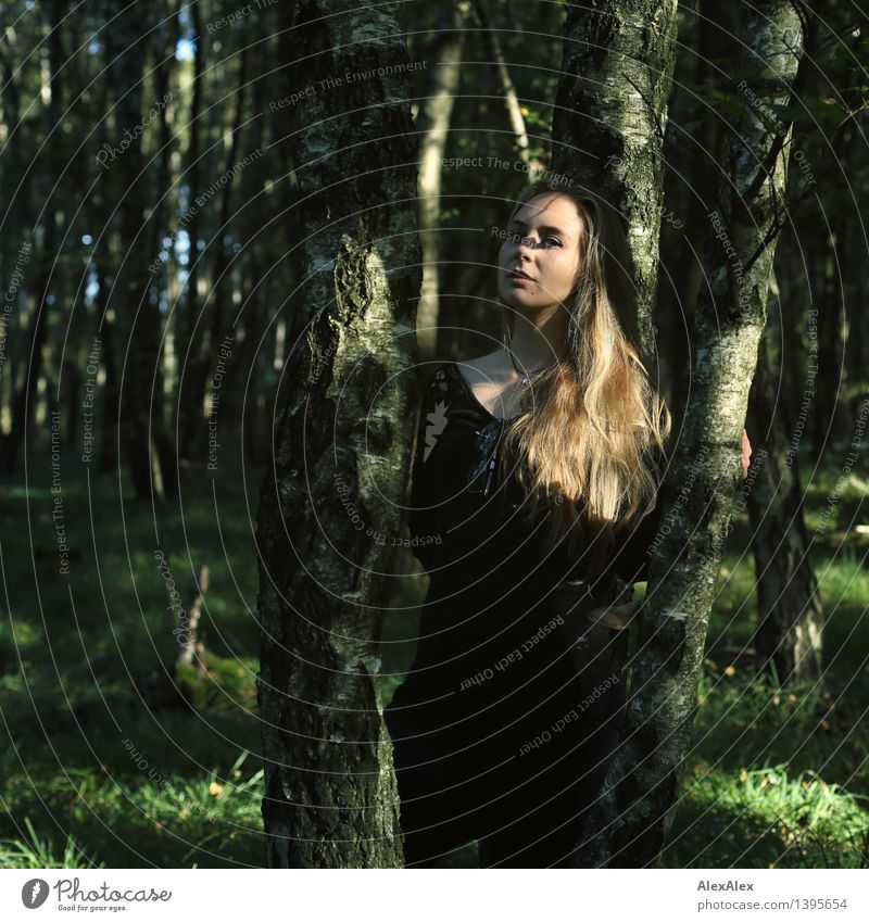 Waldspaziergang Ausflug Abenteuer wandern Junge Frau Jugendliche Haare & Frisuren Gesicht 18-30 Jahre Erwachsene Natur Schönes Wetter Baum Gras blond langhaarig