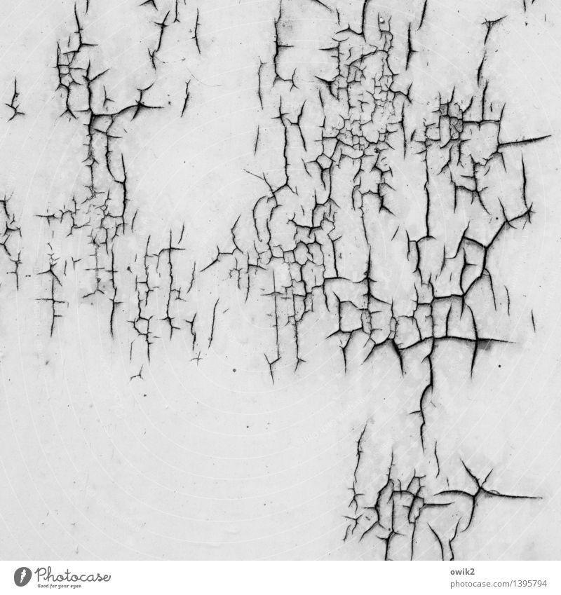 Vor sich hin Kunstwerk Metall Rost alt trocken Verfall Vergänglichkeit Zerstörung Zahn der Zeit Fragment Riss Spuren Blech Wand Schwarzweißfoto Außenaufnahme