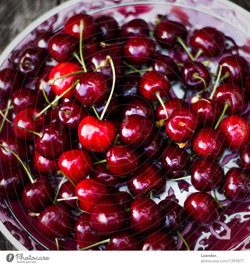 Kirschen Sommer rot Frühling Essen Foodfotografie Gesundheit Lifestyle Lebensmittel Frucht frisch ästhetisch Ernährung genießen süß lecker Bioprodukte