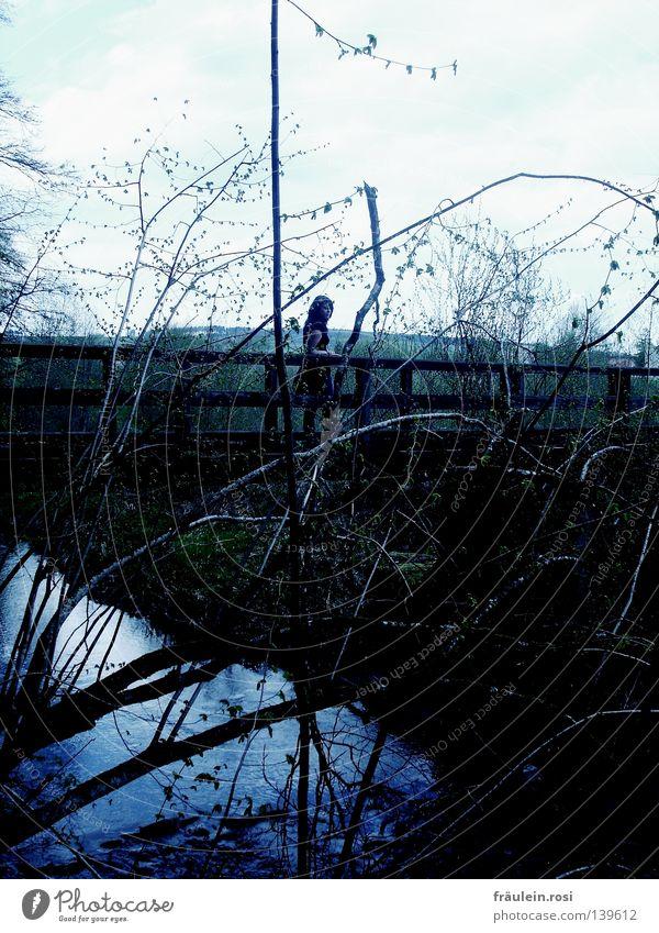 Todesbrückle Frau Himmel Wasser dunkel gehen Angst warten laufen gefährlich Brücke bedrohlich Trauer Ast Fluss Verzweiflung Bach