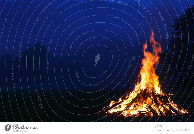 herbstfeuer Himmel Baum Wald Wärme Herbst natürlich hell Feld Nebel Idylle Kraft Beginn Feuer Hoffnung heiß Vorfreude