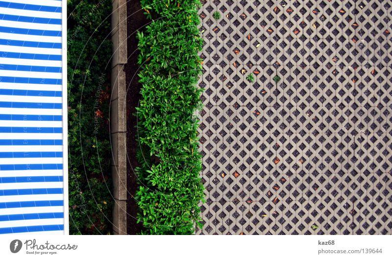 Die 'grüne' Wand Markise Sommer Frühling Physik Winter Stoff Streifen weiß Gras Ferien & Urlaub & Reisen Balkon Wohnung Haus Hecke Mauer Asphalt Hochhaus Beton
