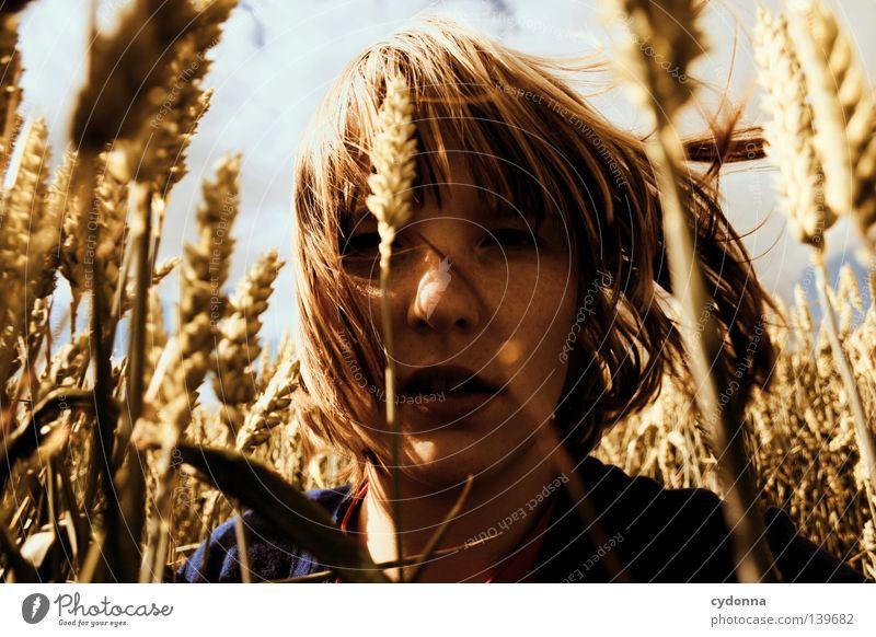 Und die Ähren wogten sacht Frau Mensch Natur schön Himmel Sonne grün Sommer Wolken Leben Wiese Gras Bewegung Haare & Frisuren Wärme Landschaft