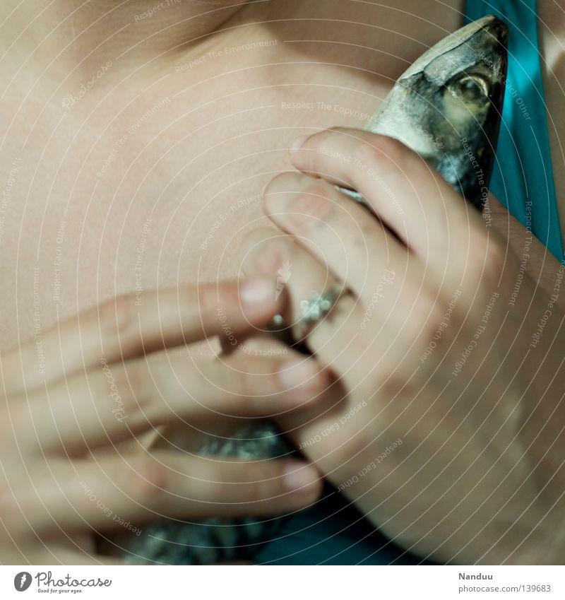 Du darfst nicht gehen Mensch Hand Tod Traurigkeit Lebensmittel verrückt Ernährung Fisch Trauer festhalten skurril Geruch Verzweiflung seltsam Tierliebe drücken