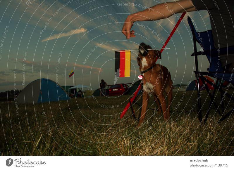 EM @ FUSION [LIMITED RADIO-EDITION] Himmel Hand Hund Ferien & Urlaub & Reisen Freude Tier Erholung Wiese Gefühle Gras Glück Stimmung lustig Deutschland Arme sitzen