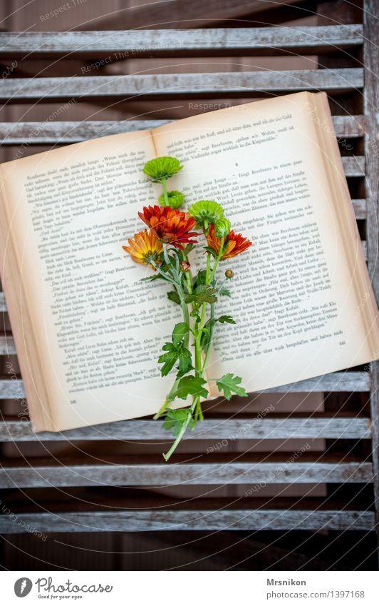 Buch Medien Printmedien lesen lernen Buchseite Lesestoff Erholung Bildung Dekoration & Verzierung Blume Blumenstrauß lieblich Farbfoto Gedeckte Farben