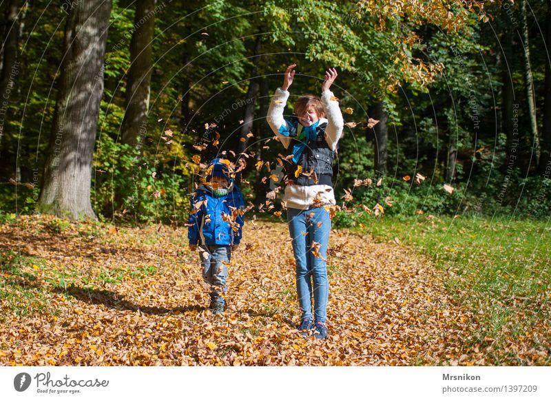 Herbst von seiner schönsten Seite Mensch Kind Blatt Mädchen Herbst Glück lachen Kindheit Fröhlichkeit Kindergruppe 8-13 Jahre Kleinkind Herbstlaub herbstlich werfen Bruder