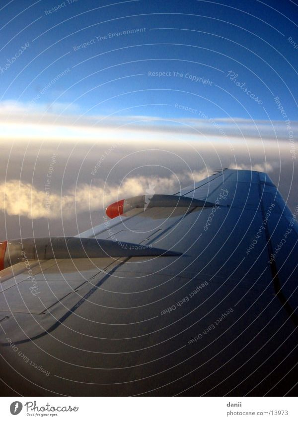 Heimflug Flugzeug Tragfläche Wolken Sonnenuntergang Europa Himmel fliegen Kerosinstreifen