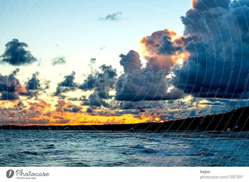 Sonnenaufgang an der Ostsee Meer Natur Wolken Sonnenuntergang blau rot schwarz Romantik Himmel dramatisch wild Schauspiel golden Brandung Küste Polen Farbfoto