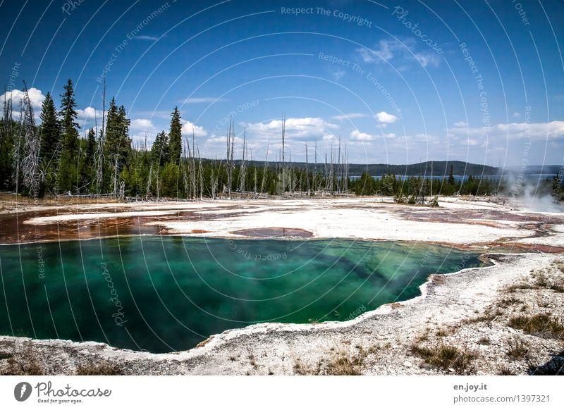 aufgeheizt Himmel Natur Ferien & Urlaub & Reisen blau Sommer Landschaft Ferne Wald Umwelt Tourismus Energie Ausflug Klima Abenteuer USA entdecken
