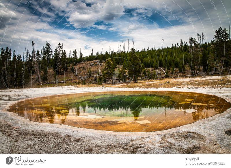 farbenfroh Himmel Natur Ferien & Urlaub & Reisen Farbe Sommer Landschaft Wolken Wald Umwelt gelb Tourismus Energie Ausflug Klima Abenteuer USA