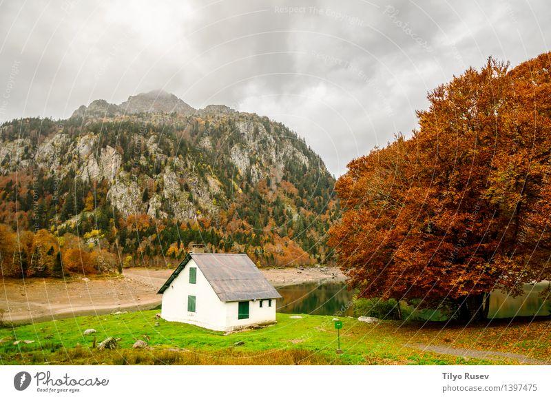 Diejenigen von Bious-Artigues Natur Pflanze grün schön Farbe Sonne Baum rot Landschaft Blatt Wald Umwelt gelb Straße Herbst Wege & Pfade