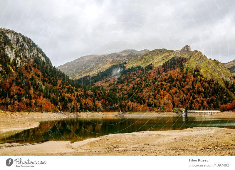 Diejenigen von Bious-Artigues schön Sonne Umwelt Natur Landschaft Pflanze Herbst Baum Blatt Park Wald See Fluss Straße Wege & Pfade hell natürlich gelb grün rot