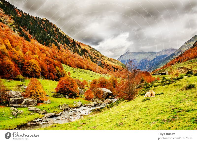 # 1397536 Natur Landschaft Berge u. Gebirge natürlich Farbe Hintergrundbild Beautyfotografie horizontal Farbfoto Außenaufnahme