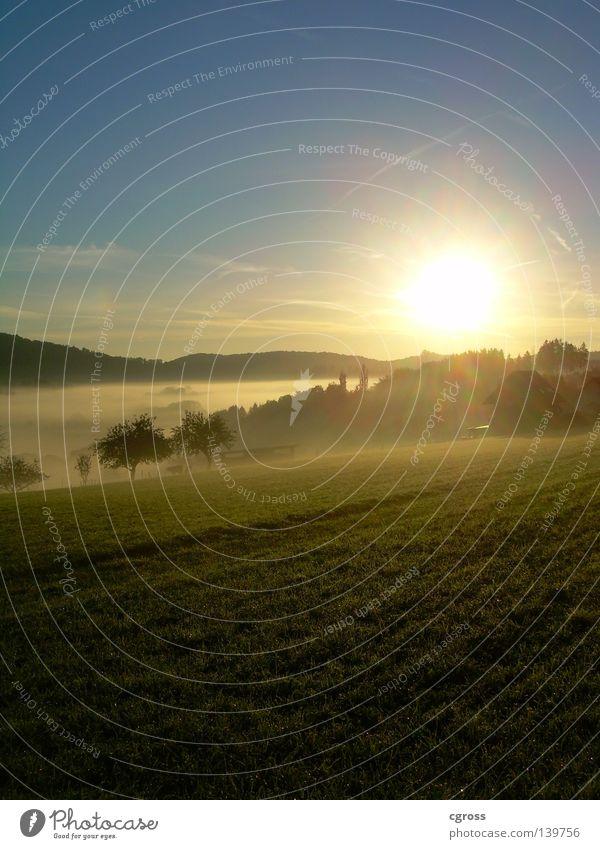sunrise Sonnenaufgang Nebel Wiese Herbst Himmel Morgen Landschaft blau