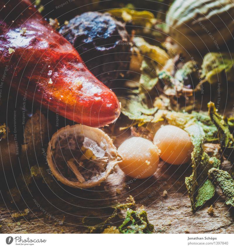 Gewürzmischung II Lebensmittel Kräuter & Gewürze Ernährung Gesunde Ernährung Essen Foodfotografie ästhetisch lecker genießen kochen & garen Chili Koriander