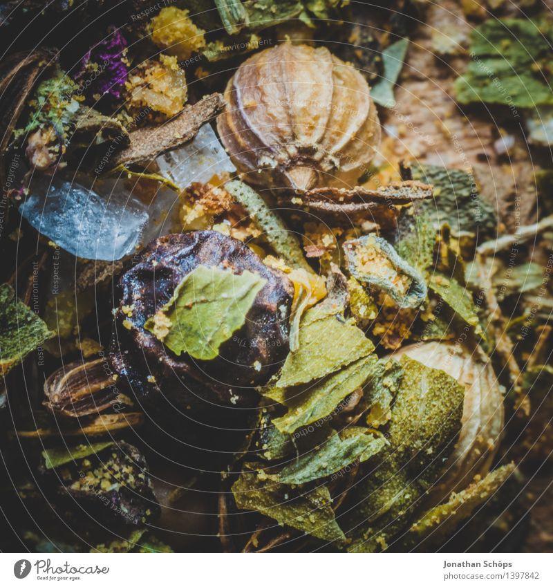 Gewürzmischung V Lebensmittel Kräuter & Gewürze Ernährung Gesunde Ernährung Essen Foodfotografie ästhetisch lecker genießen kochen & garen Koriander