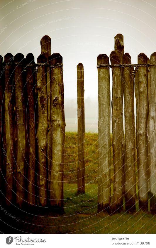Sonnenwende Holz Mauer Zaun Pause Nebel Bauwerk Observatorium Wintersonnenwende Jahreszeiten Wiese Wahrzeichen Denkmal Farbe Baumstamm Pfosten Natur goseck