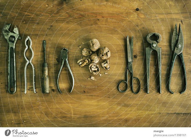 Nüsse knacken mit unterschiedlichem Werkzeug, angeordnet neben zerschlagene Wallnüsse Nuss Nussknacker Ernährung Picknick Vegetarische Ernährung