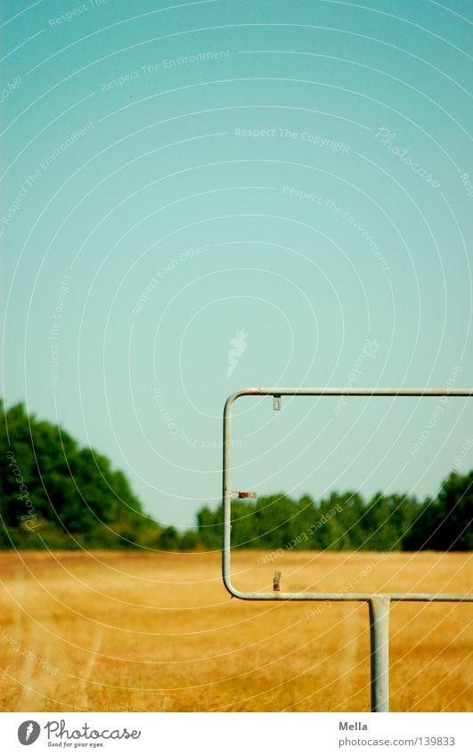 Nirgendwo Himmel Baum grün blau Sommer Einsamkeit Gras Wege & Pfade Wärme Landschaft braun Feld Schilder & Markierungen leer Physik Amerika