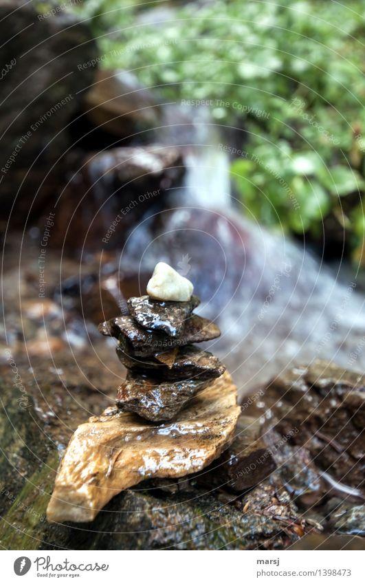 Wassermanderl Wellness Leben harmonisch Wohlgefühl Erholung ruhig Meditation Bach Steinmännchen Zusammensein nass Stapel aufeinander Wegweiser Wandermarkierung