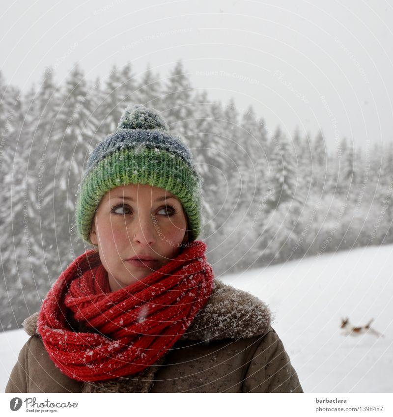 mit Mütze, Schal und Hund Frau Erwachsene 1 Mensch Winter Schnee Schneefall Baum Wald Schwarzwald Mantel Freude Bewegung Farbe Freizeit & Hobby Gesundheit Klima