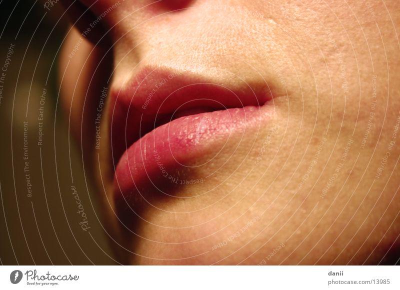 Der Mund feminin Frau nah Lippen Küssen